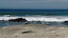 Namibia - Skeleton Coast Fur Seals Swimming and Sea Birds Stock Footage