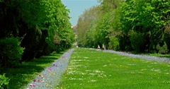 The Cismigiu Gardens (Parcul Cismigiu) Stock Footage