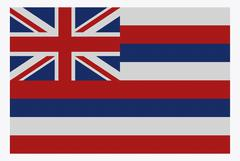 Hawaii State Flag White Dots - stock illustration