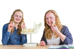 Two female students exploring jaw model with teeth in biology Stock Photos
