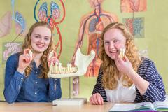 Two female students exploring jaw model with teeth in biology - stock photo