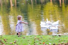 Cute baby girl chasing wild geese in an autumn park - stock photo