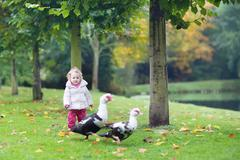 Funny little baby girl playing with wild ducks in a beautiful autumn park - stock photo