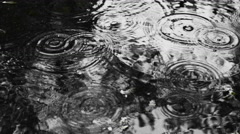 Rain Drops Falling Into a Pool Stock Footage