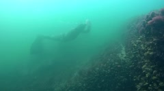 Freediver in monofin swims over the wreck. Stock Footage