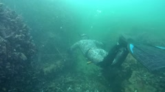 Two freedivers swim over the wreck. Stock Footage