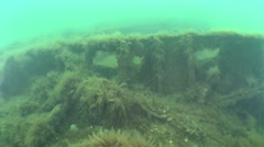 Camera movement over the wreck. Stock Footage