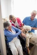 Senior couple and nurse taking care of a dog Stock Photos