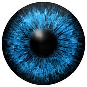 Eye iris vector texture Stock Illustration