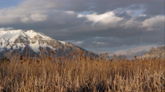 Time lapse of clouds over snow capped mountains and field of tamarisk grass. - stock footage