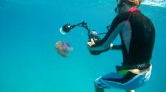 Underwater photographer shooting Cauliflower jellyfish (Cephea cephea) Stock Footage