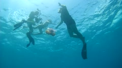 Underwater photographer shoots a man and a woman on the background of jellyfish Stock Footage