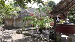 Traditional Mayan Garden In Quinta Roo Mexico Stock Footage
