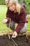 Woman planting seeds in her garden - stock photo