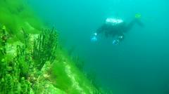 Tech diver swimming near the sheer cliff overgrown Baikal Demosponge - stock footage