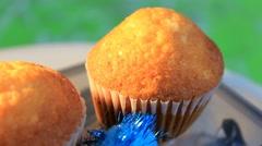 green background - Cupcake - Sugar - 07 - stock footage