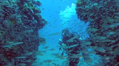 Diver swims through a School of fish Glassy Sweepers (Pempheris schomburgkii) Stock Footage