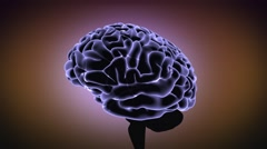 Brain in action Thinking - stock footage