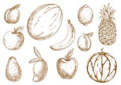 Organically grown tropical, garden fruits sketches - stock illustration