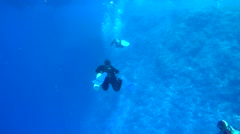 diver swimming near a coral reef - stock footage