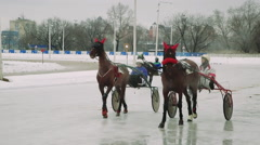 Racing on chariots with horses jockeys controlled. Arkistovideo