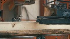 wood cutting machine board log in a sawmill - stock footage