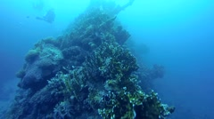 The wreckage of the wreck ship SS Carnatic Stock Footage