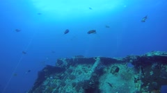Freediver dives on the wreck SS Thistlegorm Stock Footage
