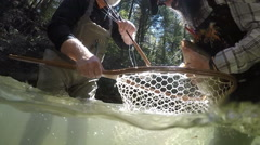 Rainbow Trout Fishing Stock Footage