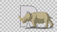 Letter R and Rhino (foreground) Stock Footage