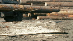 heavy equipment loading with clipper cut logs - stock footage