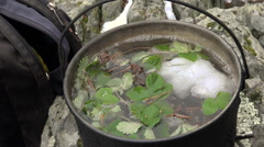 Tea Made From Forest Herbs in a Pot on the Gas Primus Stock Footage