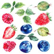 Set of watercolor fruits and berries isolated on a white - stock illustration