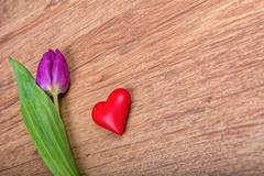 Violet tulip and heart on a wooden background Stock Photos