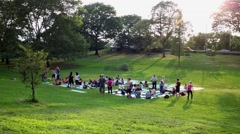 Large group of people gathers at grassy lawn in Manhattan. Stock Footage