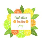 Vector square frame with citrus - stock illustration
