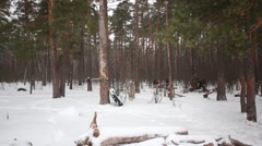 Approaching to outdoor sports camp in the snowy winter wood. Stock Footage