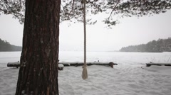 Climb rope hangs on pine tree in the snowy winter wood. Stock Footage