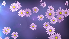 Falling flowers - stock footage