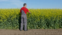 Agriculture, farmer in canola, rapeseed field Stock Footage