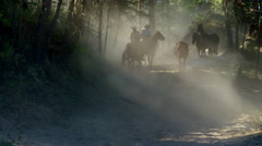 Horses running in Roundup on Dude Ranch with Cowboy Riders Stock Footage