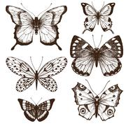 Hand drawn butterflies - stock illustration