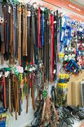 Leashes and collars in Four paws pet store - stock photo