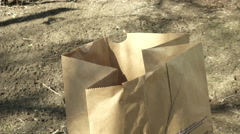 Doing Yard Work at Home - Clearing Brush using Paper Yard Bags Stock Footage