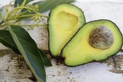Fresh green cutted avocado Stock Photos