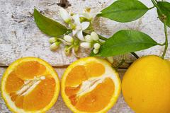 Fresh oranges with leaves and orange tree flowers on rustic wood - stock photo