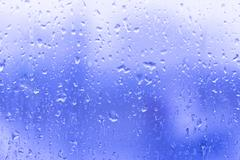 Raindrops on a glass Stock Photos