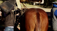 Cowgirl in corral saddling her horse Dude Ranch Canada Stock Footage