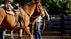 Male female Ranch hands with horses on Ranch in Corral Canada Stock Footage