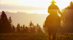 Silhouette of Cowboy Rider forest wilderness area Canada Stock Footage
